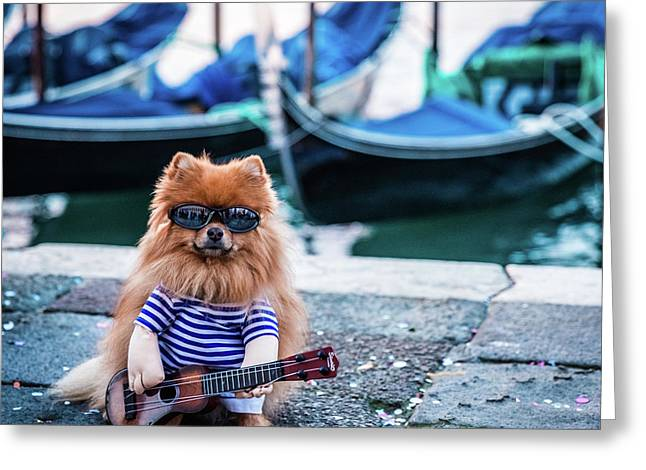 Funny Dog At The Carnival In Venice Greeting Card