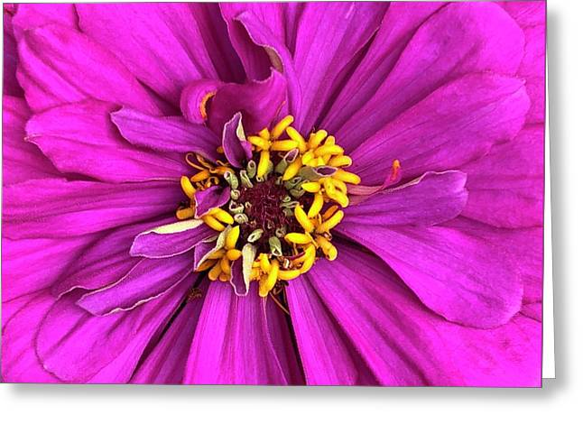 Greeting Card featuring the digital art Fuschia Bloom by Cindy Greenstein