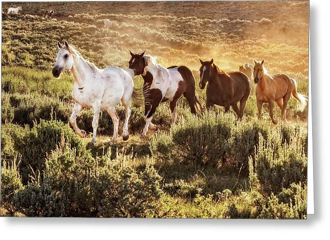 Galloping Down The Mountain Greeting Card