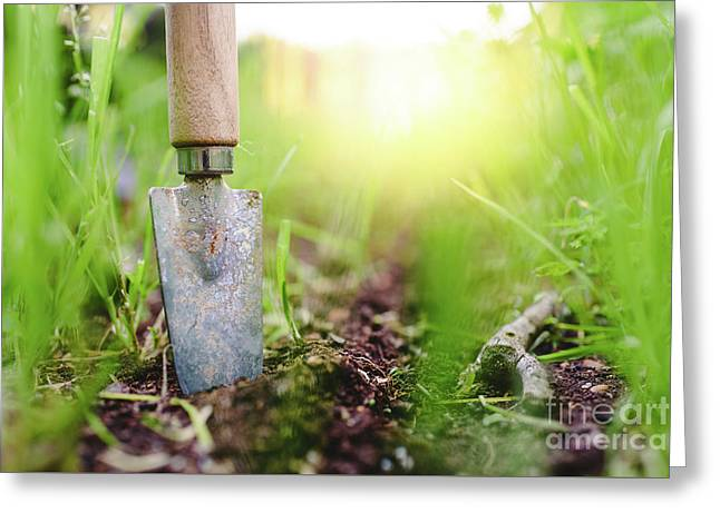 Gardening Shovel In An Orchard During The Gardener's Rest Greeting Card