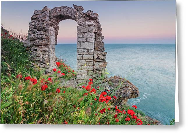 Gate In The Poppies Greeting Card