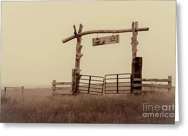 Gate In The Wilderness Greeting Card