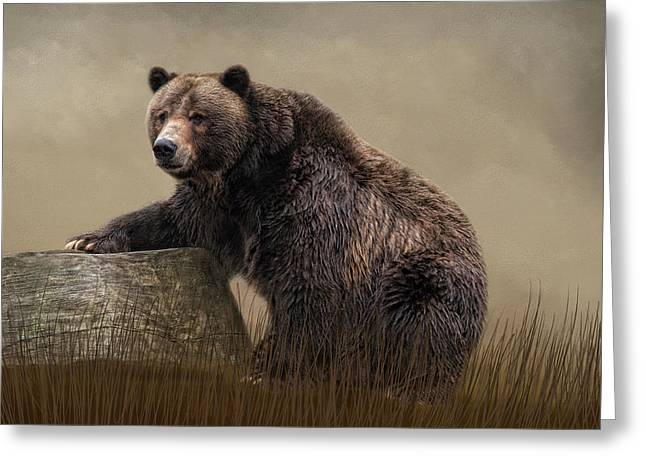 Gentle Ben Greeting Card