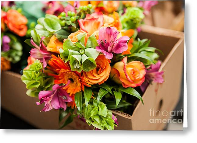 Gerbera, Tulips And Mix Of Summer Greeting Card