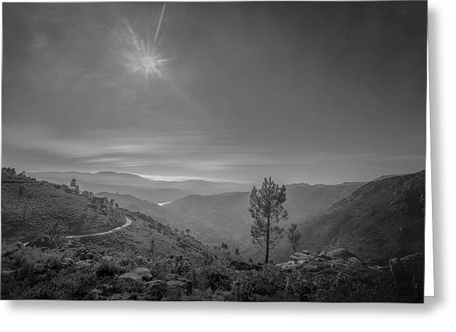 Greeting Card featuring the photograph Geres - One Tree by Bruno Rosa
