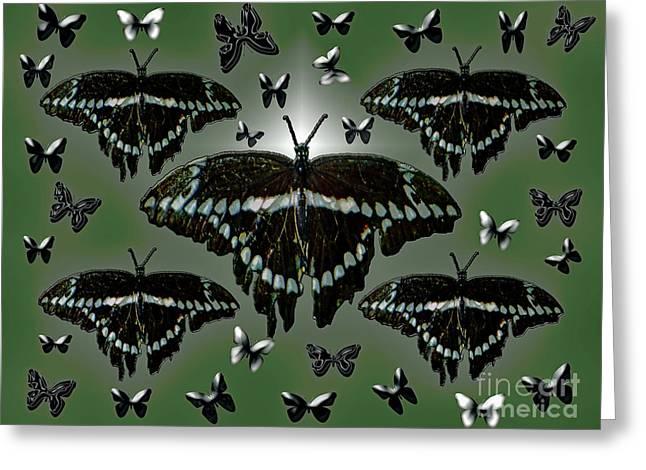 Giant Swallowtail Butterflies Greeting Card