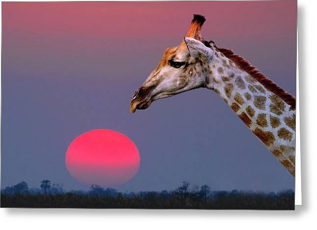 Giraffe Composite Greeting Card