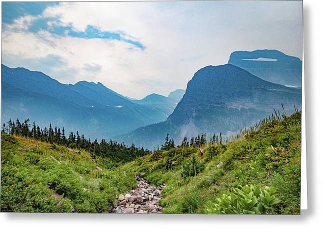 Greeting Card featuring the photograph Glacier Canyon Vista by Lon Dittrick