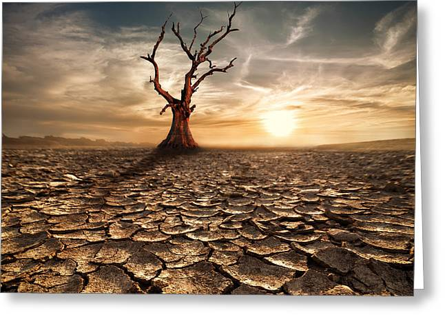 Global Warming Concept. Lonely Dead Greeting Card