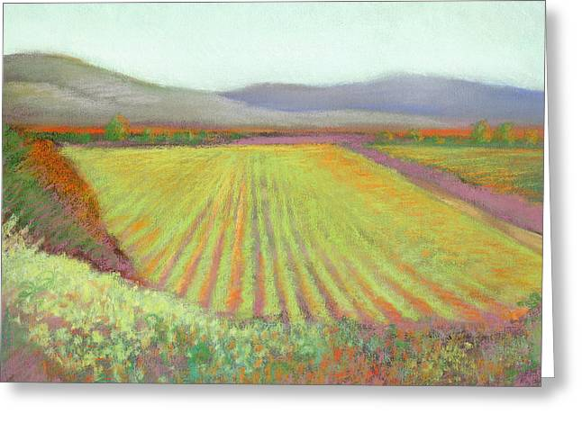 Gloria Ferrer Winery Greeting Card