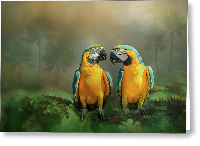Gold And Blue Macaw Pair Greeting Card