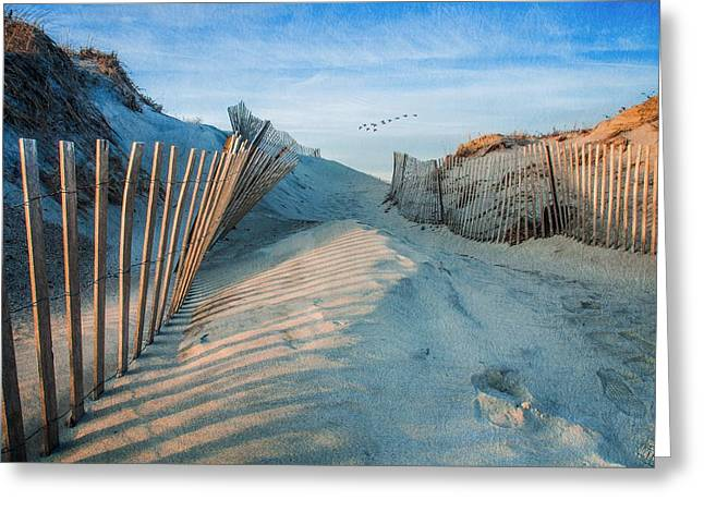 Golden Glow Dunes Greeting Card