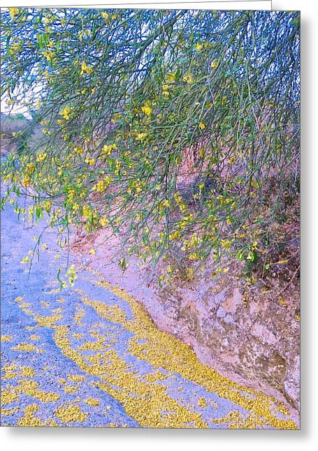 Golden Petals In A Desert Wash Greeting Card