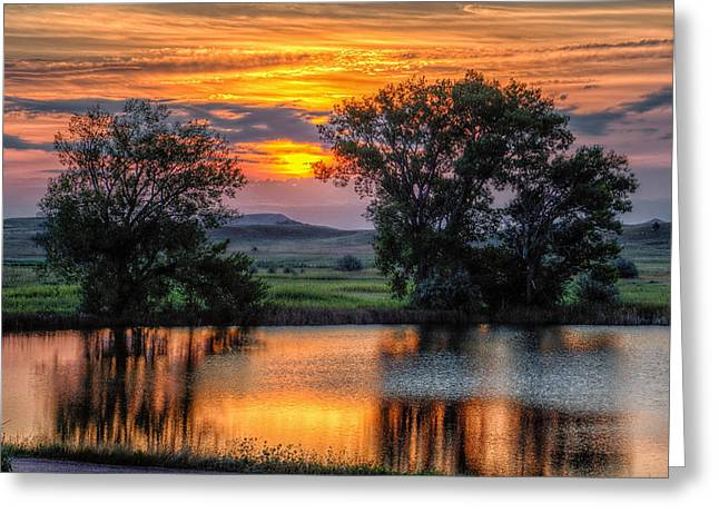 Golden Pond At 36x60 Greeting Card