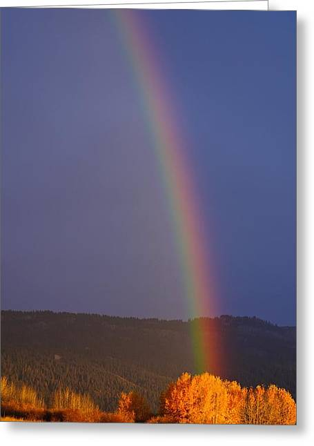 Golden Tree Rainbow Greeting Card