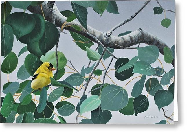 Goldfinch And Aspen Greeting Card