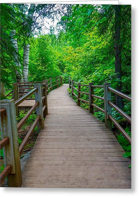 Gooseberry River Trail Greeting Card