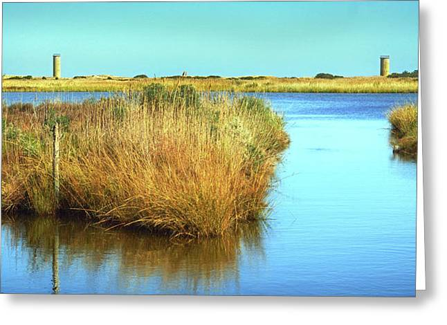 Greeting Card featuring the photograph Gordon's Pond State Park Panorama by Bill Swartwout Fine Art Photography