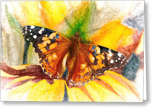 Gorgeous Painted Lady Butterfly Greeting Card