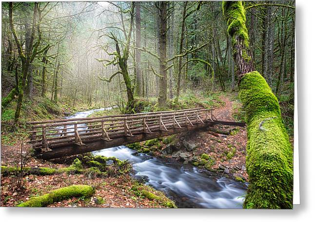 Greeting Card featuring the photograph Gorton Creek by Nicole Young