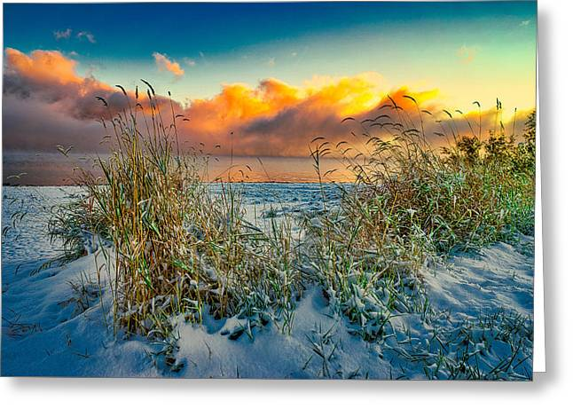 Grass And Snow Sunrise Greeting Card