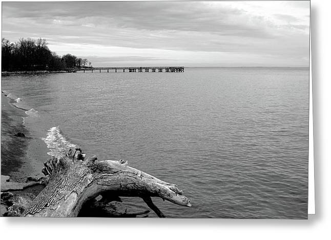 Gray Day On The Bay Greeting Card