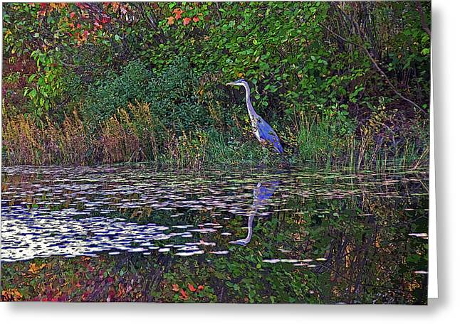 Great Blue Heron In Autumn Greeting Card
