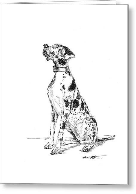 Great Dane 02 Greeting Card