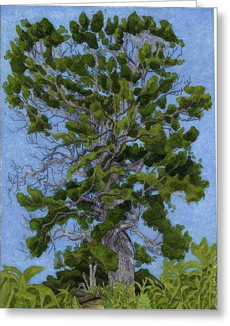 Green Tree, Hot Day Greeting Card