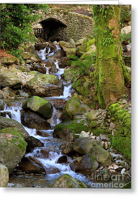 Greenhead Gill Above Grasmere In Lake District National Park Greeting Card