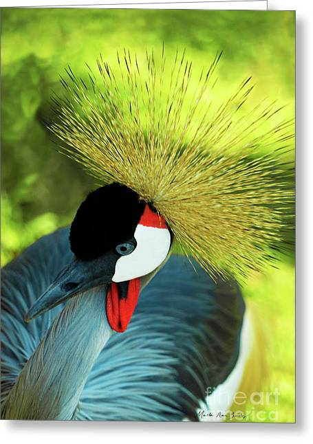 Greeting Card featuring the painting Grey Crowned Crane Gulf Shores Ab A101218 by Mas Art Studio