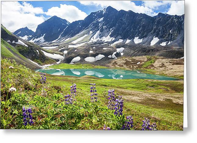 Grizzly Bear Lake Greeting Card