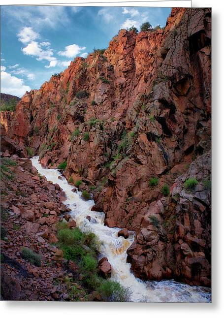 Guadalupe River Spring Runoff  Greeting Card