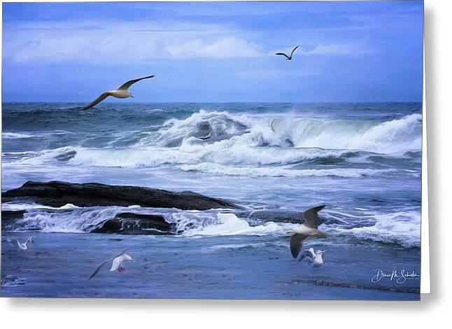 Gulls Just Wanna Have Fun Greeting Card