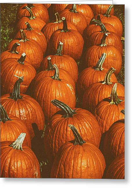 Halloween Harvest - 2 Greeting Card
