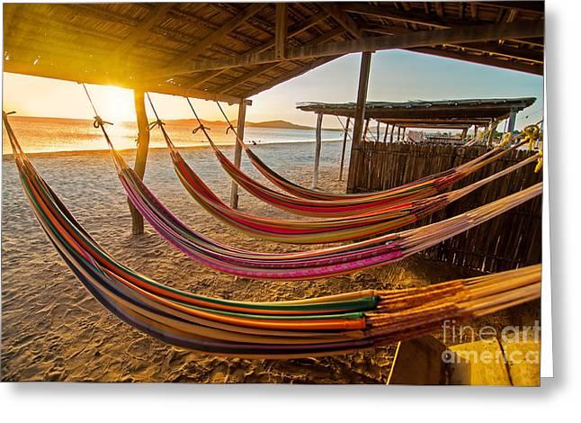 Hammocks On A Beach At Sunset Greeting Card