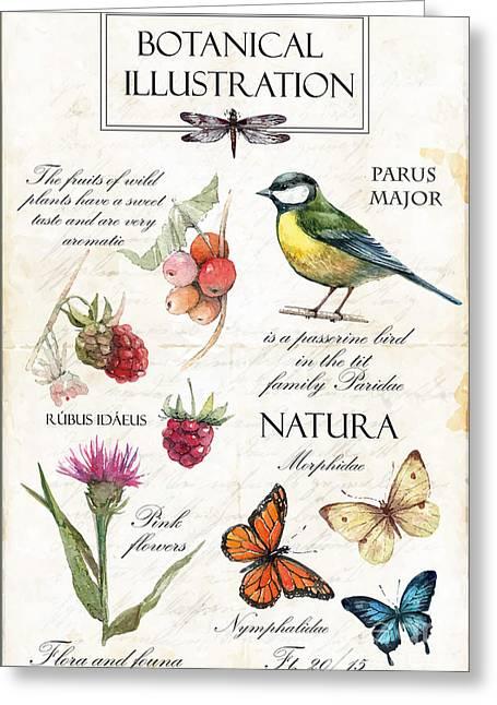 Hand Drawn Botanical Illustration In Greeting Card