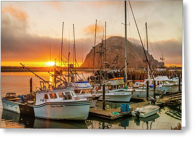 Harbor Greeting Card by Fernando Margolles
