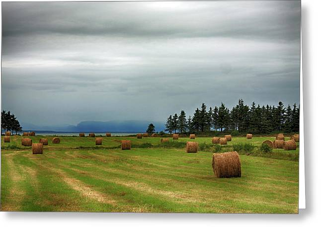 Greeting Card featuring the photograph Harvest Time In Canada by Tatiana Travelways