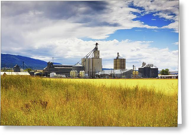 Greeting Card featuring the photograph Harvest Time In Idaho 2 by Tatiana Travelways