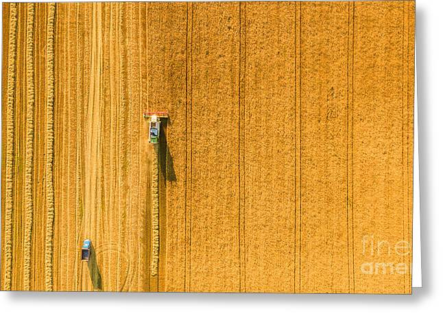 Harvester Machine Working In Field Greeting Card