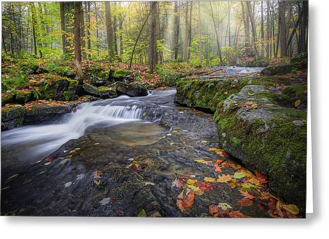 Greeting Card featuring the photograph Hatch Brook by Bill Wakeley