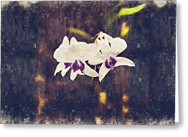 Hawaiian Tree Orchid Greeting Card