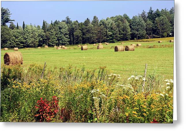 Greeting Card featuring the photograph Hay Bails And Wild Flowers by Tatiana Travelways