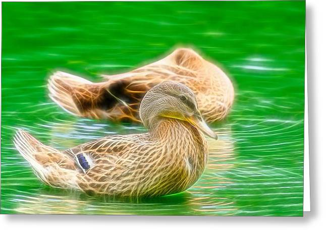 Headless Honey Duck Fibers Greeting Card