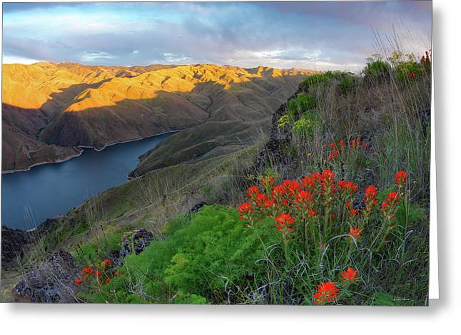 Hells Canyon View Greeting Card by Leland D Howard