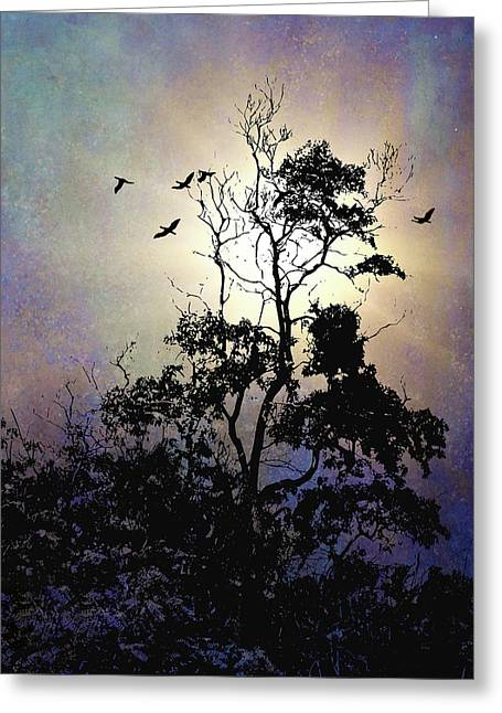 Herons At Dusk Greeting Card