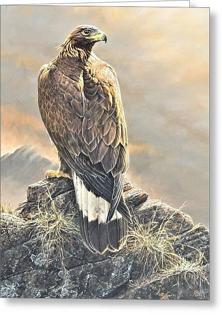 Highlander - Golden Eagle Greeting Card