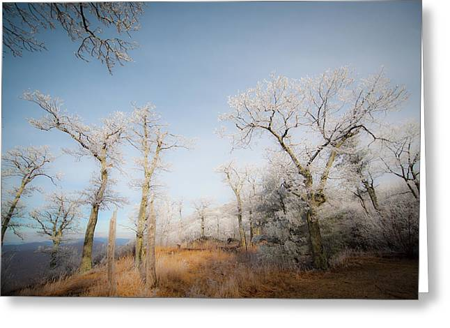 Hilltop Hoarfrost Greeting Card