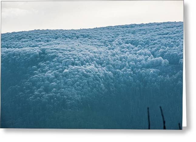Hoarfrost Blue Mountain Greeting Card